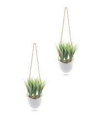 Grass Leaf Hanging Wall Plants