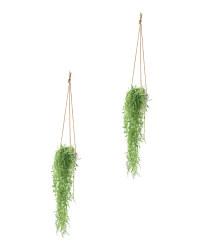 Round Leaf Ceramic Hang Plants