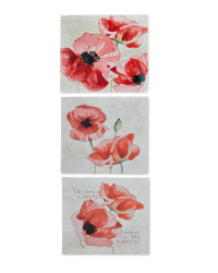 3 Pack Poppy Canvases
