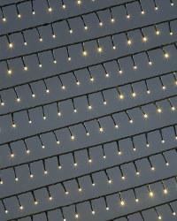 Warm White 1000 Compact LED Lights