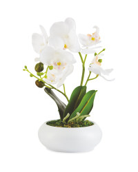 Faux White Orchid In Ceramic