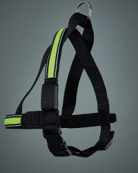Pet Collection Light Up Dog Harness