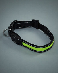 Pet Collection Flashing Dog Collar
