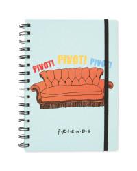 Friends Pivot Notebook