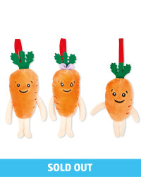 Carrot Kids Tree Decorations