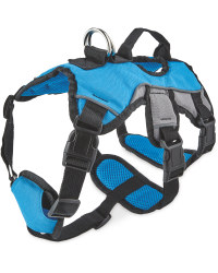 Blue Adventure Dog Harness