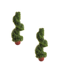 Boxwood Topiary Spiral 2 Pack