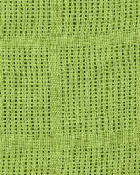 Cellular Blanket with Satin Trim - Lime