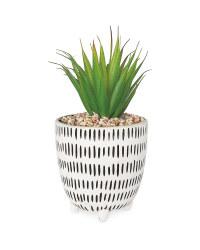 Dash Patterned Pot Plant