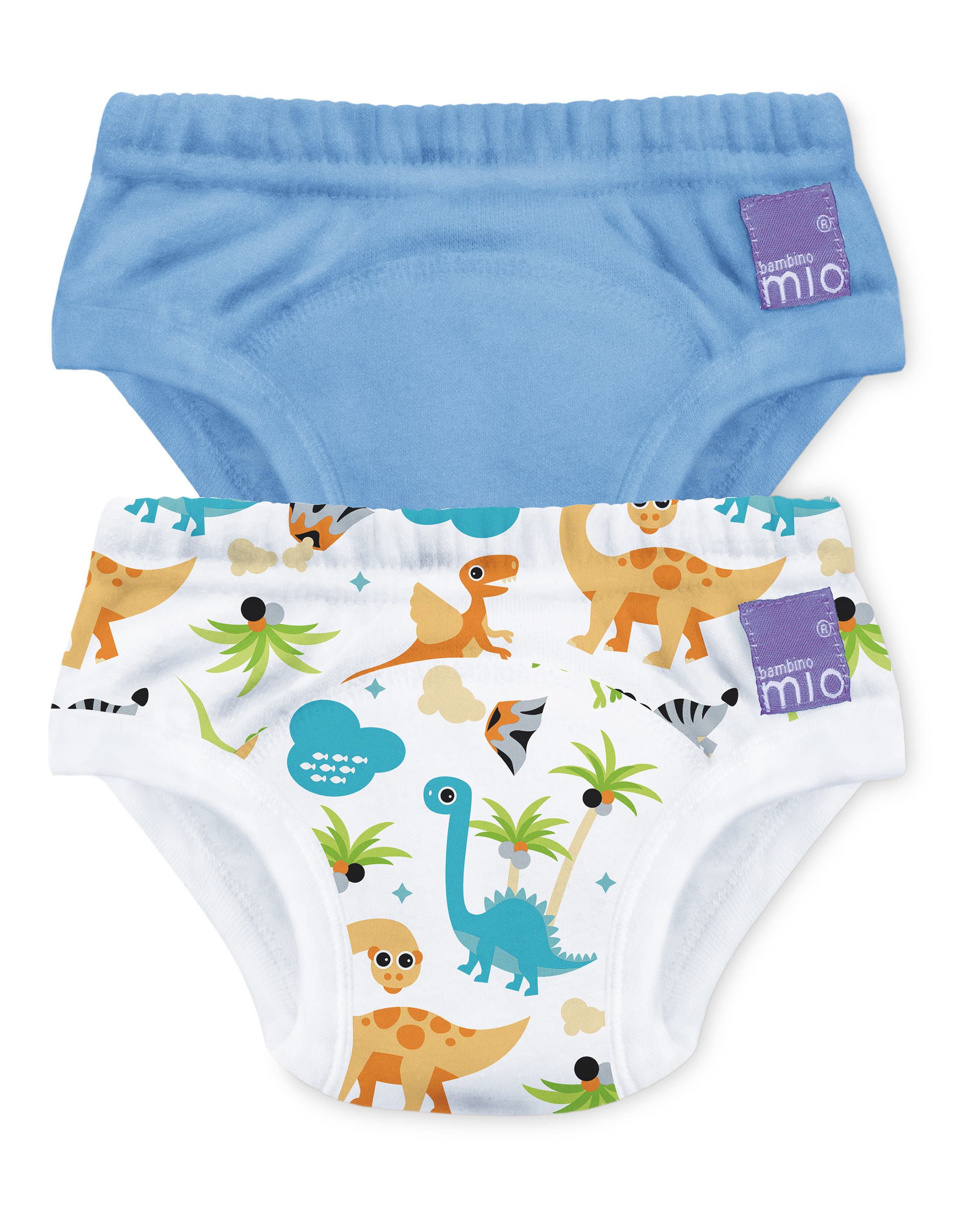 Dinosaur Potty Training Pants 2 Pack