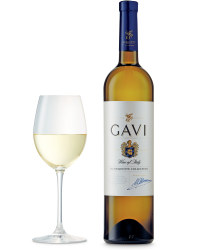 Exquisite Collection Gavi 2015