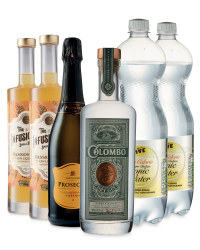 Gin and Tonic Summer Mix