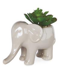 Grey Elephant Pot Plant