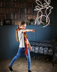 Hermione Granger Light Painting Wand