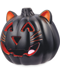 Halloween Black Cat Light Up Pumpkin