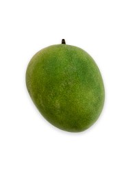 Large Loose Mango