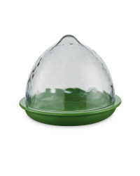 Lime Food Storage Pod-Clear