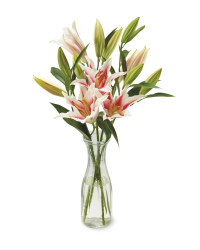 Long Stem Oriental Lillies