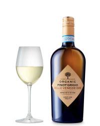 Organic Pinot Grigio Delle Venezie