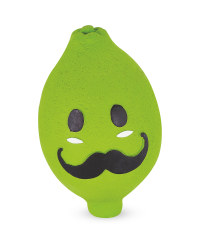 Lime Squeaky Dog Toy
