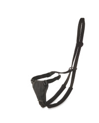 Pet Collection No Pull Dog Harness