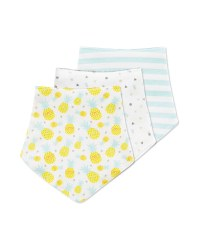 Lily & Dan Pineapple Bibs 3 Pack