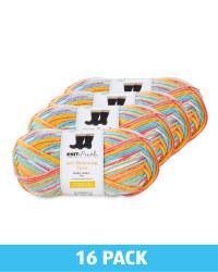 Razzle Dazzle Yarn 16 Pack