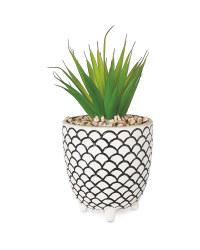 Scale Patterned Pot Plant